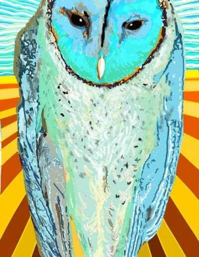 Owl Icon 01