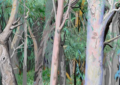 Artworks of the Australian bush