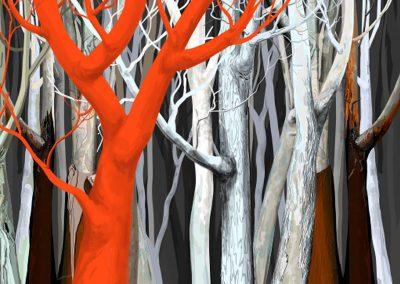 australia-the-texture-of-trees-nigel-lazenby (7)